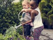 5 Steps to Planning a Successful School Garden   image