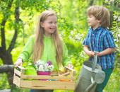 Let's Talk About: National Garden Month image